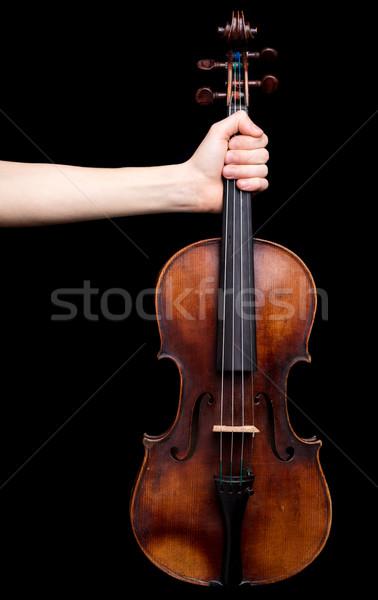 El keman siyah beyaz müzik Stok fotoğraf © Giulio_Fornasar