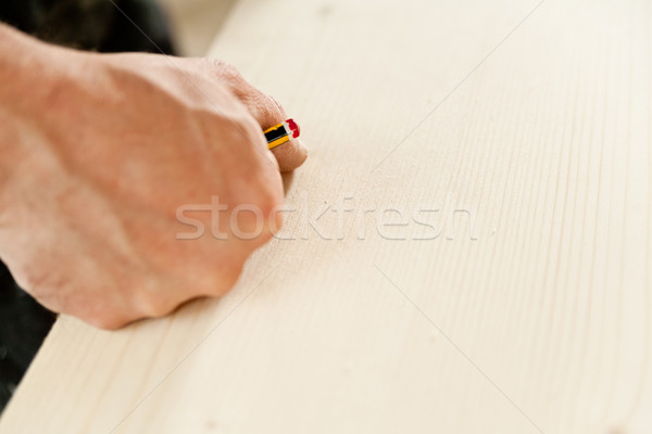 detail of a hand of a carpenter thinking Stock photo © Giulio_Fornasar