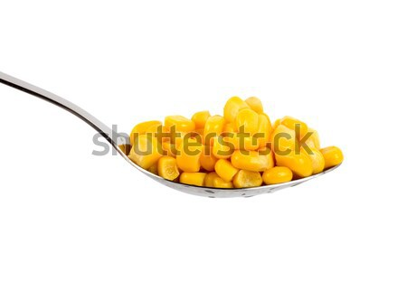 Canned corn Stock photo © Givaga