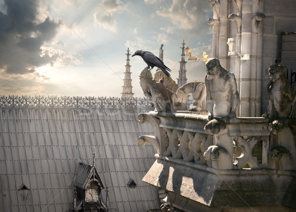 Chimeras on Notre Dame Stock photo © Givaga