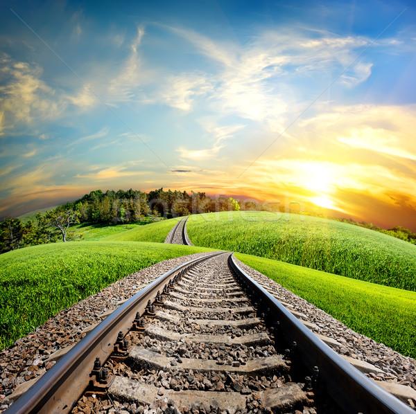 Railroad through forest Stock photo © Givaga