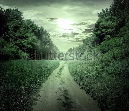 Szürkület erdő vidéki út égbolt fa tavasz Stock fotó © Givaga