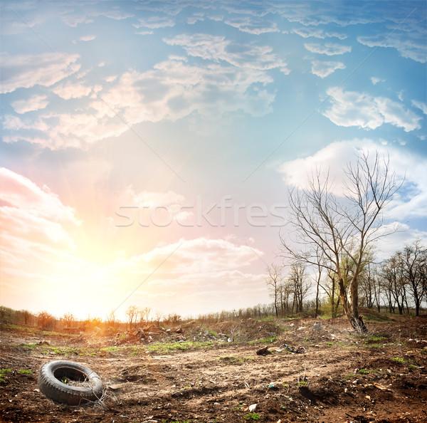 Garbage dump Stock photo © Givaga