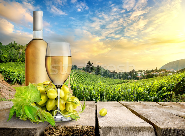 White wine and vineyard Stock photo © Givaga
