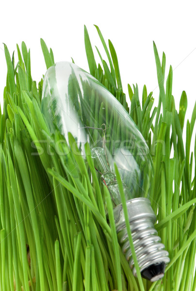 Lamp in grass isolated Stock photo © Givaga