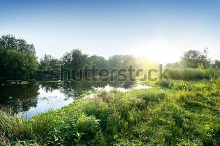 River in sunny morning Stock photo © Givaga