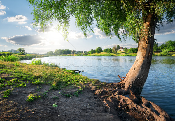 View on river Stock photo © Givaga