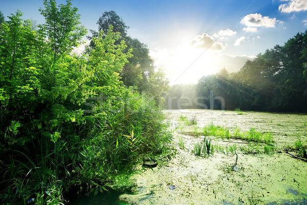 Río verano cielo agua primavera Foto stock © Givaga