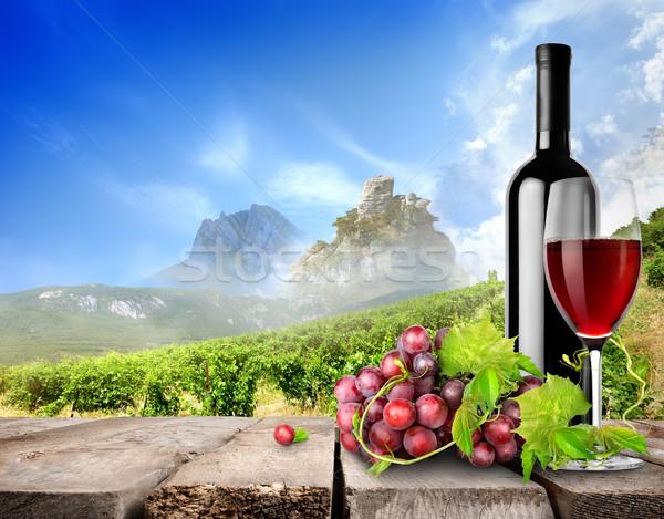 üveg bor szőlőskert szőlő felhők fa Stock fotó © Givaga