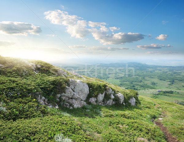 View on the valley Stock photo © Givaga
