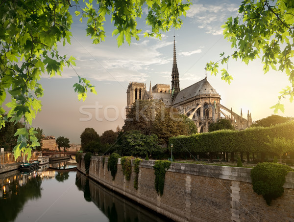 Notre Dame and park Stock photo © Givaga