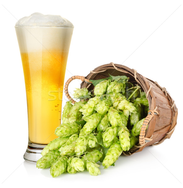 Beer and hop in basket Stock photo © Givaga