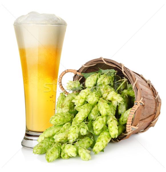 Sör komló kosár világos sör izolált fehér Stock fotó © Givaga