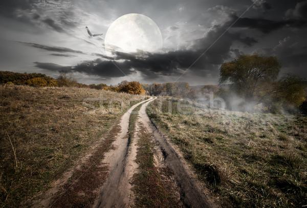 Campagne lune nuit image Photo stock © Givaga