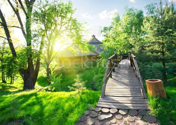 House of log and bridge Stock photo © Givaga