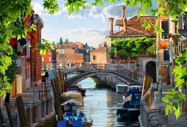Veneza velho casas Itália árvore edifício Foto stock © Givaga