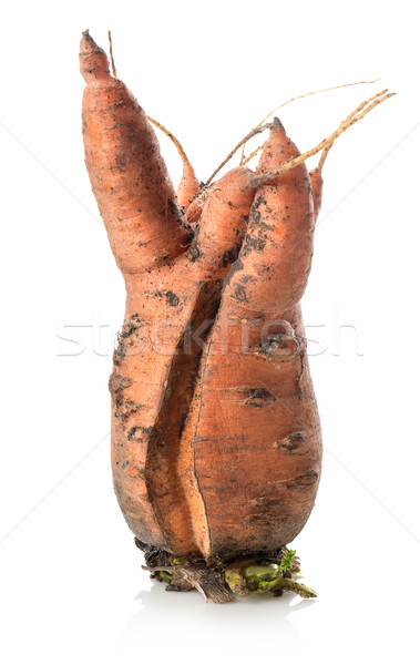 Carrot mutant Stock photo © Givaga