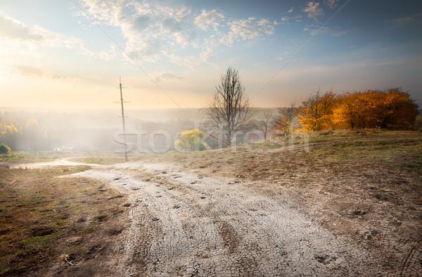 電気 ポール 道路 山 日没 自然 ストックフォト © Givaga