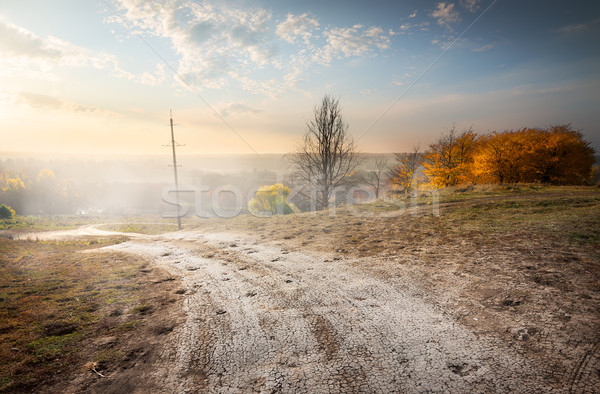 электрических полюс дороги гор закат природы Сток-фото © Givaga