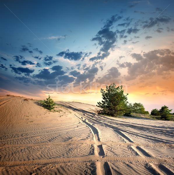 Estrada rural deserto pôr do sol árvore nuvens sol Foto stock © Givaga