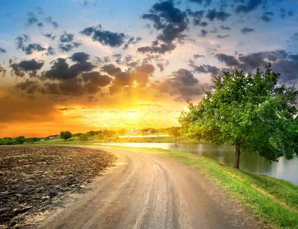 Country road near the lake Stock photo © Givaga