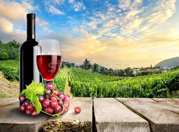 Wine with grape and vineyard Stock photo © Givaga