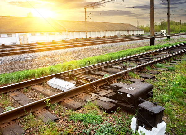 Grass near rails Stock photo © Givaga
