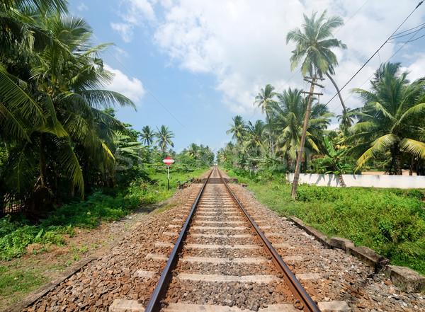 Assinar ferrovia Sri Lanka grama estrada paisagem Foto stock © Givaga