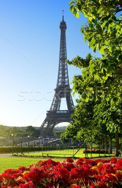 çiçek Eyfel Kulesi güneşli sabah Paris Fransa Stok fotoğraf © Givaga