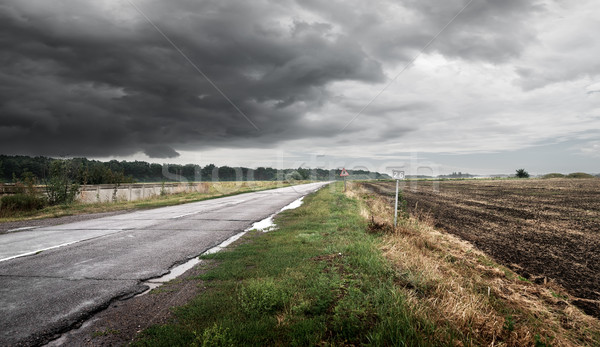 Road in cloudy weather Stock photo © Givaga