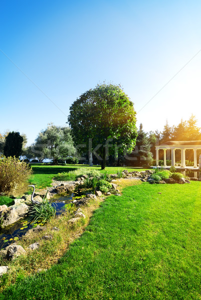 Bower in park Stock photo © Givaga