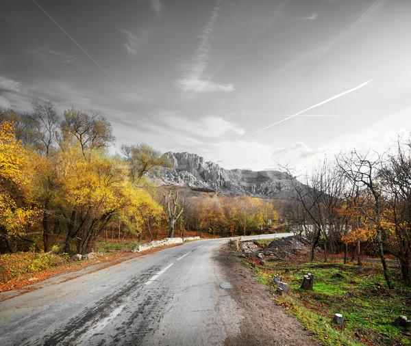 Estrada montanha grama floresta rodovia rocha Foto stock © Givaga
