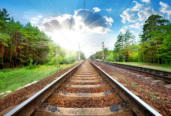 Railroad close-up Stock photo © Givaga