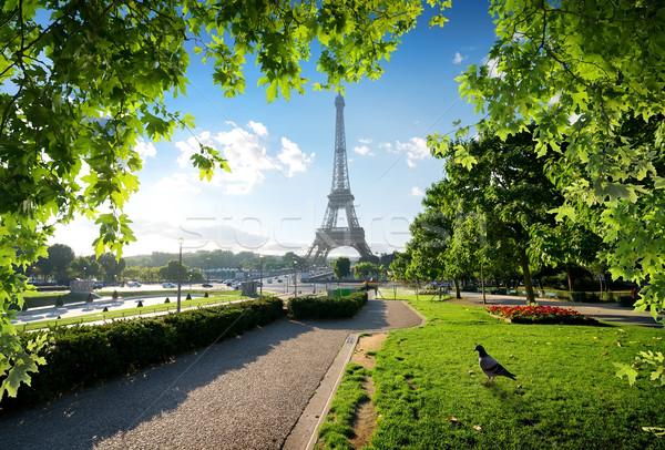 Güvercin Eyfel Kulesi bahçeler Paris Fransa gökyüzü Stok fotoğraf © Givaga