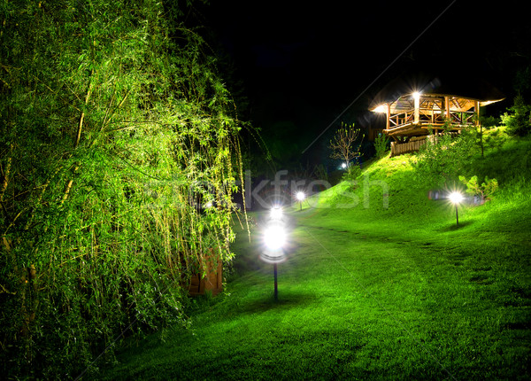 Wooden arbour at night Stock photo © Givaga