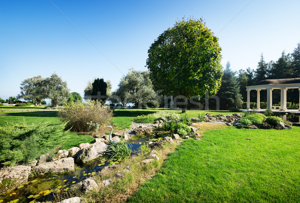 Arbour in a park Stock photo © Givaga
