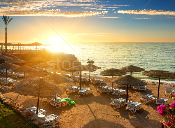 Mer rouge plage soleil nature paysage beauté Photo stock © Givaga