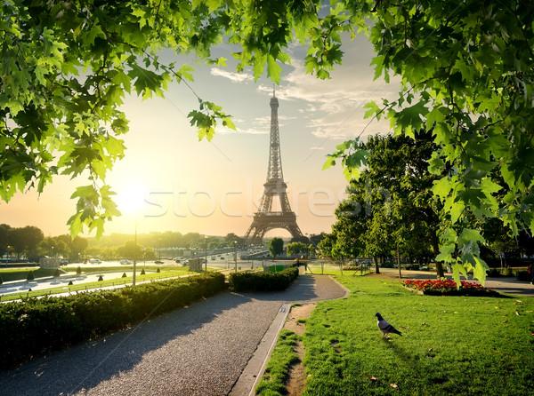 Jardins du Trocadero Stock photo © Givaga
