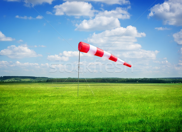 Direction of the wind Stock photo © Givaga