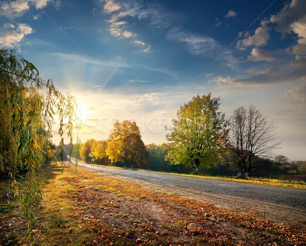 Autumn highway Stock photo © Givaga