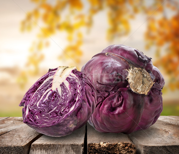Purple cabbage on table Stock photo © Givaga
