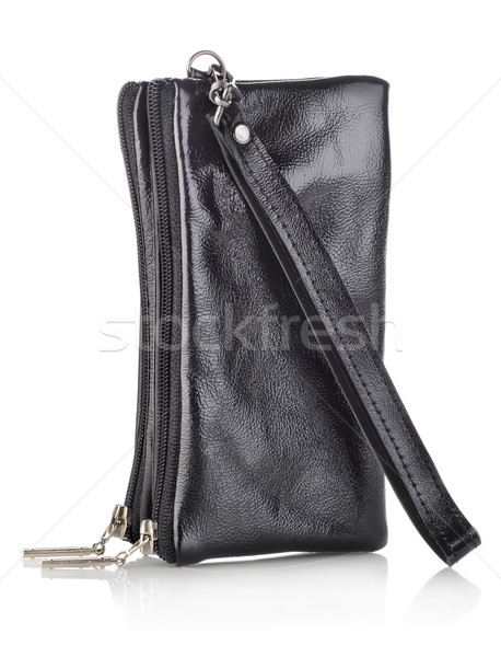 Doble caso teléfono móvil aislado blanco teléfono Foto stock © Givaga