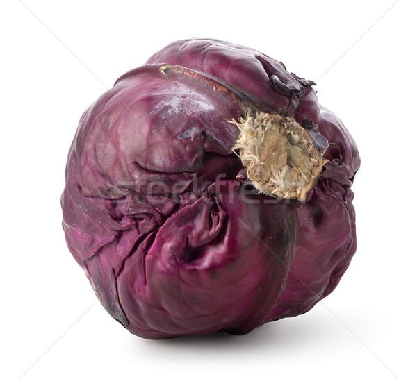 全体 紫色 キャベツ 孤立した 白 食品 ストックフォト © Givaga