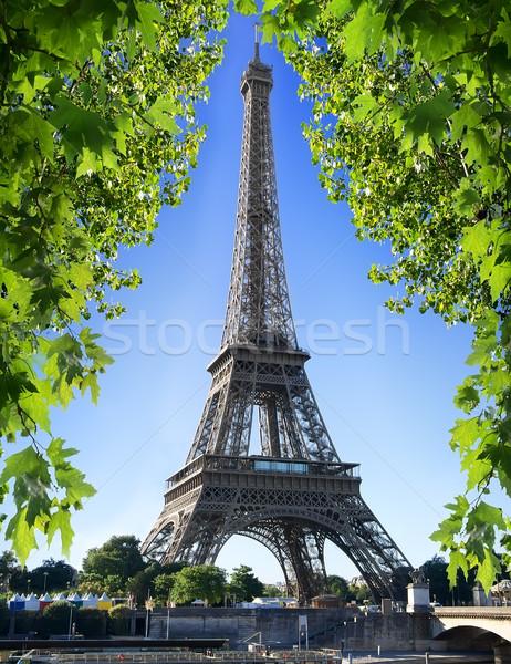 Stok fotoğraf: Eyfel · Kulesi · doğa · akçaağaç · ağaç · Paris · Fransa