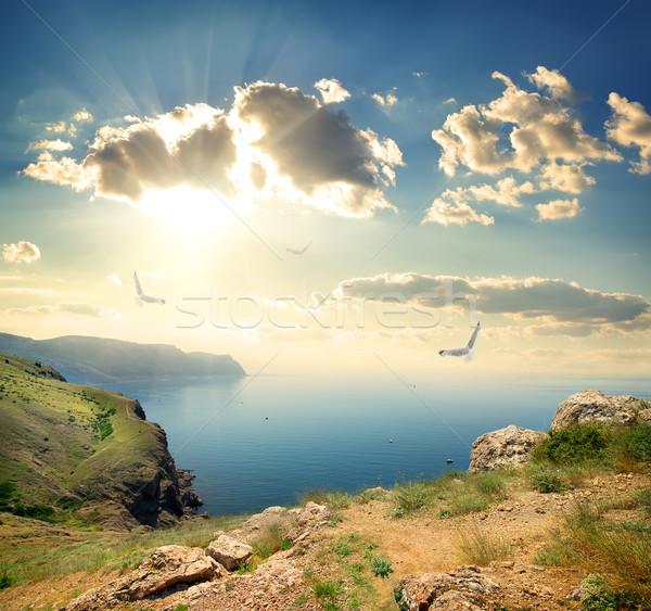 カモメ 岩 海 ビッグ 空 水 ストックフォト © Givaga