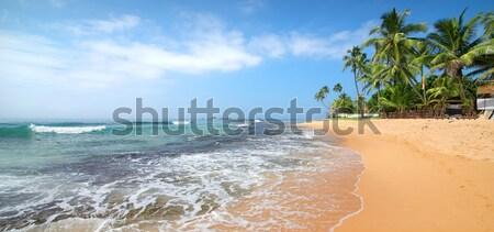 Schuimend golven strand indian oceaan water Stockfoto © Givaga