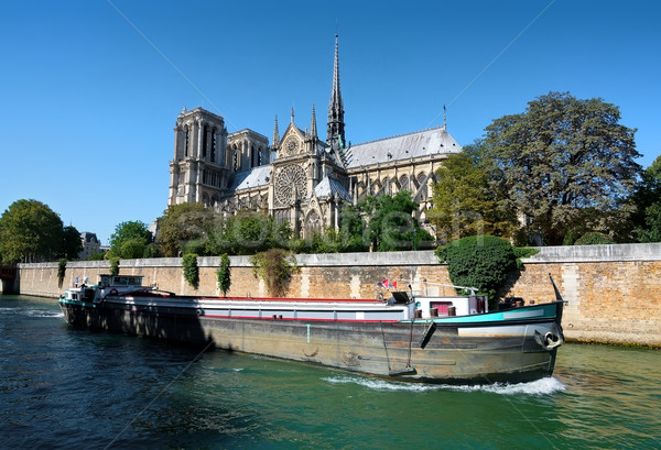 View on Notre Dame Stock photo © Givaga