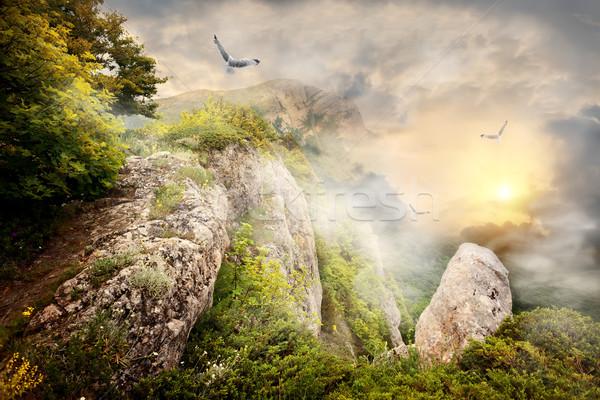 Fog in mountains Stock photo © Givaga