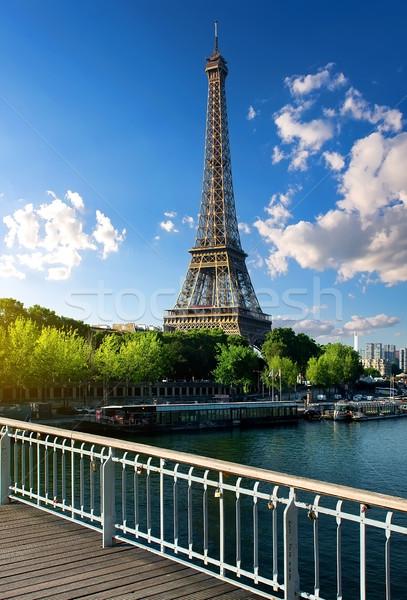 Gyönyörű párizsi tájkép kilátás Eiffel-torony Párizs Stock fotó © Givaga