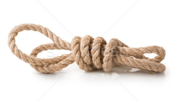 Coil of rope isolated Stock photo © Givaga